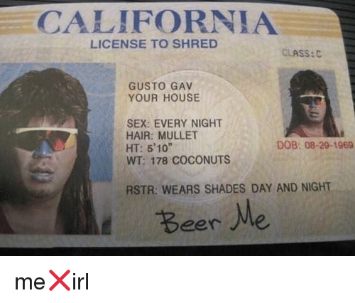 mullet: CALIFORNIA  LICENSE TO SHRED  CLASS:  GUSTO GAV  YOUR HOUSE  SEX: EVERY NIGHT  HAIR: MULLET  HT: 5'10  WT; 178 COCONUTS  DOB: 08-29-1969  RSTR: WEARS SHADES DAY AND NIGHT  Beer Me me❌irl