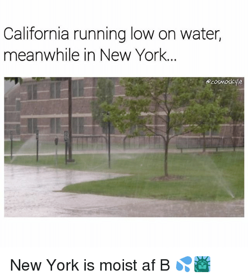 Af, Memes, and New York: California running low on water,  meanwhile in New York.  Acosmoskyle New York is moist af B 💦🗽