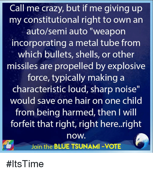 "Crazy, Blue, and Hair: Call me crazy, but if me giving up  my constitutional right to own an  auto/semi auto ""weapon  incorporating a metal tube from  which bullets, shells, or other  missiles are propelled by explosive  force, typically making a  characteristic loud, sharp noise""  would save one hair on one child  from being harmed, then I wil  forfeit that right, right here..right  now.  Join the BLUE TSUNAMI -VOTE #ItsTime"
