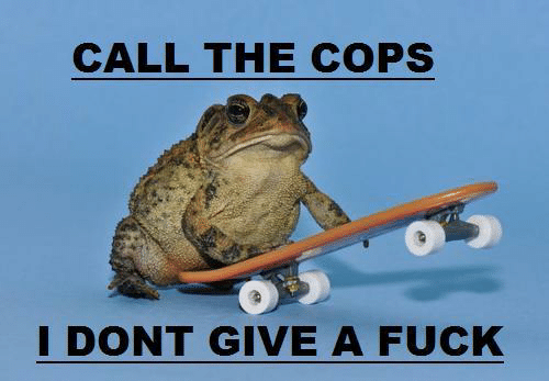 Give A Fuck: CALL THE COPS  DONT GIVE A FUCK