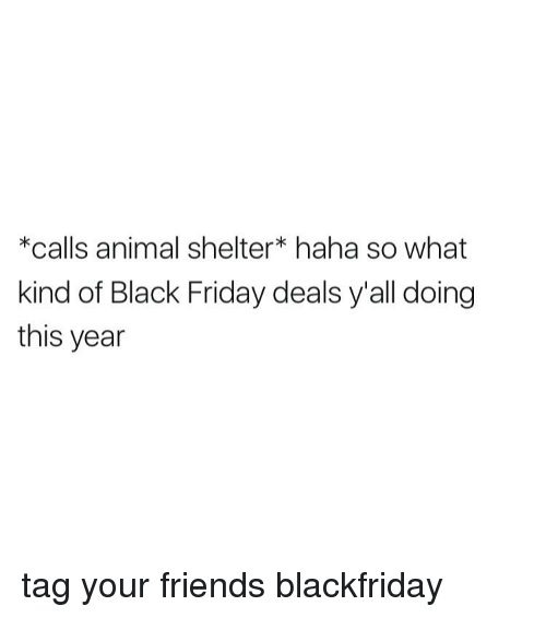 Black Friday, Memes, and Animal Shelter: *calls animal shelter haha so what  kind of Black Friday deals y all doing  this year tag your friends blackfriday