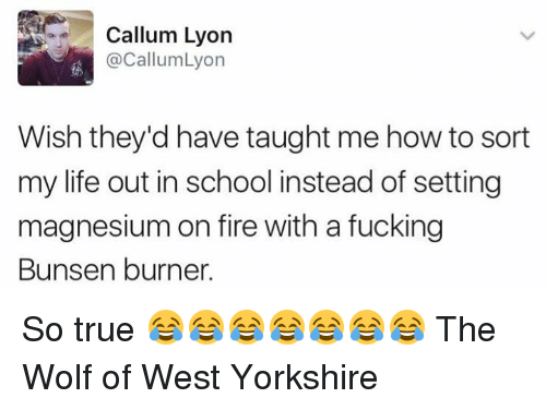 Burners: Callum Lyon  @Callum Lyon  Wish they'd have taught me how to sort  my life out in school instead of setting  magnesium on fire with a fucking  Bunsen burner. So true 😂😂😂😂😂😂😂 The Wolf of West Yorkshire