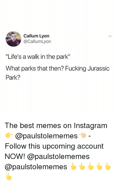 """walk in the park: Callum Lyon  @CallumLyon  """"Life's a walk in the park""""  What parks that then? Fucking Jurassic  Park? The best memes on Instagram 👉 @paulstolememes👈🏼 - Follow this upcoming account NOW! @paulstolememes @paulstolememes 👆👆👆👆👆👆"""
