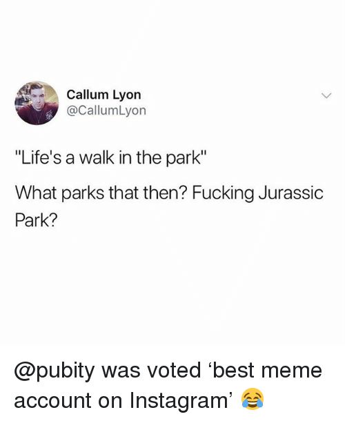 """Callum: Callum Lyon  @CallumLyon  """"Life's a walk in the park""""  What parks that then? Fucking Jurassic  Park? @pubity was voted 'best meme account on Instagram' 😂"""