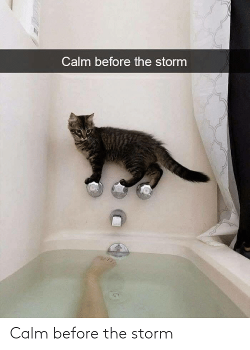 storm: Calm before the storm