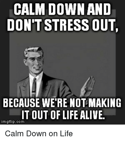 Don T Stress Funny Meme : Calm down and don t stress out because were not making it