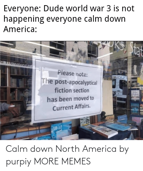 North: Calm down North America by purpiy MORE MEMES