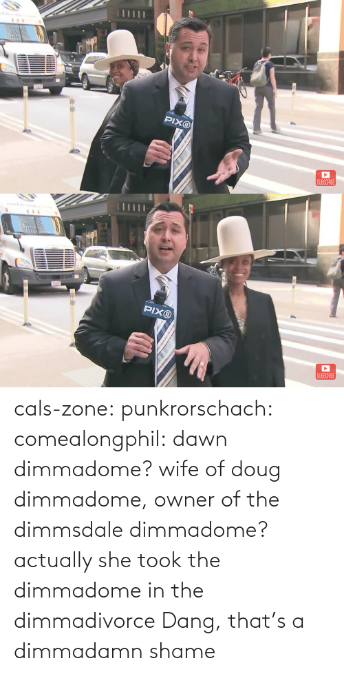 Actually: cals-zone: punkrorschach:  comealongphil: dawn dimmadome? wife of doug dimmadome, owner of the dimmsdale dimmadome?  actually she took the dimmadome in the dimmadivorce     Dang, that's a dimmadamn shame