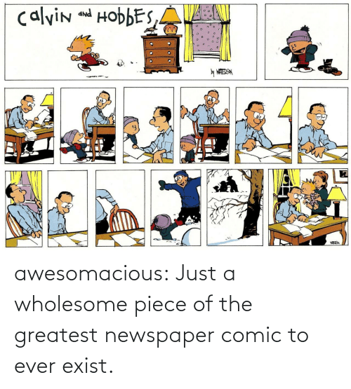 The Greatest: calvin and HobbES,A  PNP  y WATERSN awesomacious:  Just a wholesome piece of the greatest newspaper comic to ever exist.