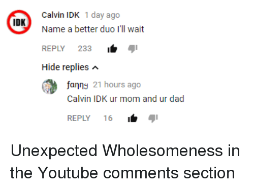 Comments Section: Calvin IDK 1 day ago  Name a better duo I'll wait  REPLY 233i  Hide replies n  IDK  fanng 21 hours ago  Calvin IDK ur mom and ur dad  REPLY 16 <p>Unexpected Wholesomeness in the Youtube comments section</p>
