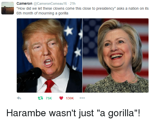 "Dank, Clowns, and Presidents: Cameron  @Cameron Comeau16 21h  ""How did we let these clowns come this close to presidency"" asks a nation on its  6th month of mourning a gorilla  75K 130K Harambe wasn't just ""a gorilla""!"