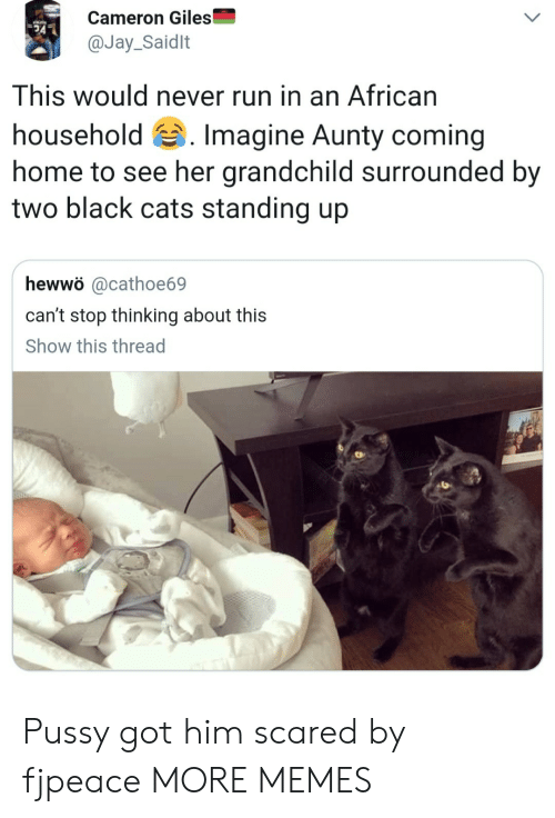 giles: Cameron Giles  @Jay_Saidlt  This would never run in an African  household 's. Imagine Aunty coming  home to see her grandchild surrounded by  two black cats standing up  hewwö @cathoe69  can't stop thinking about this  Show this thread Pussy got him scared by fjpeace MORE MEMES