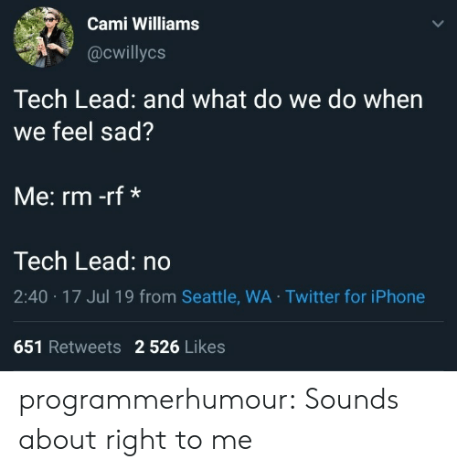 Seattle: Cami Williams  @cwillycs  Tech Lead: and what do we do when  we feel sad?  Me: rm -rf*  Tech Lead: no  2:40 17 Jul 19 from Seattle, WA Twitter for iPhone  651 Retweets 2 526 Likes programmerhumour:  Sounds about right to me