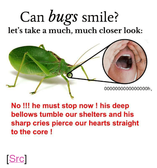 """Crumch: Can bugs smile?  let's take a much, much closer look:  0000000000000000h  No! he must stop now ! his deep  bellows tumble our shelters and his  sharp cries pierce our hearts straight  to the core! <p>[<a href=""""https://www.reddit.com/r/surrealmemes/comments/7cr255/b%C5%8D%C5%8Dm_crumch_tumble_protect/"""">Src</a>]</p>"""