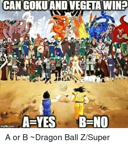 Dragon Ball Z Super: CAN GOKUANDVEGETA WINS  CAN A YES B NO  mgrip Dom A or B ~Dragon Ball Z/Super