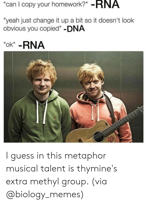 """Metaphor: can I copy your homework?"""" -RNA  """"yeah just change it up a bit so it doesn't look  obvious you copied""""-DNA  """"ok"""" -RNA I guess in this metaphor musical talent is thymine's extra methyl group. (via @biology_memes)"""