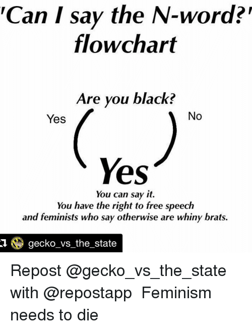 Meme Can I Say the NWord Flowchart Are You Black No Yes Yes – Word Flow Chart