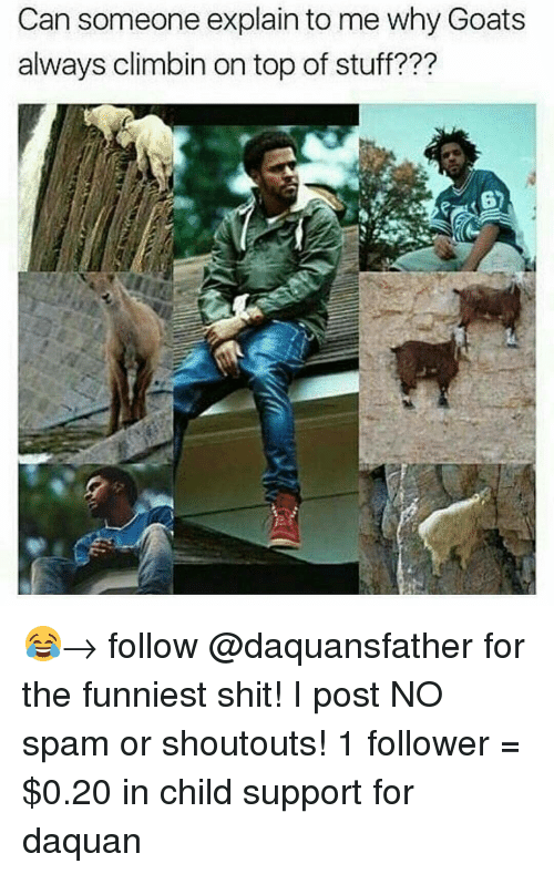 Child Support, Daquan, and Goat: Can someone explain to me why Goats  always climbin on top of stuff??? 😂→ follow @daquansfather for the funniest shit! I post NO spam or shoutouts! 1 follower = $0.20 in child support for daquan