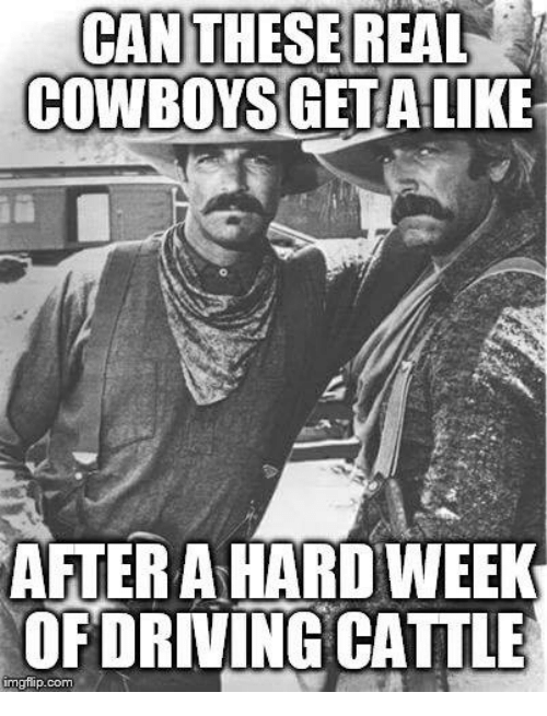 Real Cowboy: CAN THESE REAL  COWBOYS GET ALIKE  AFTER A HARDWEEK  OF DRIVING CATTLE  gflip.com