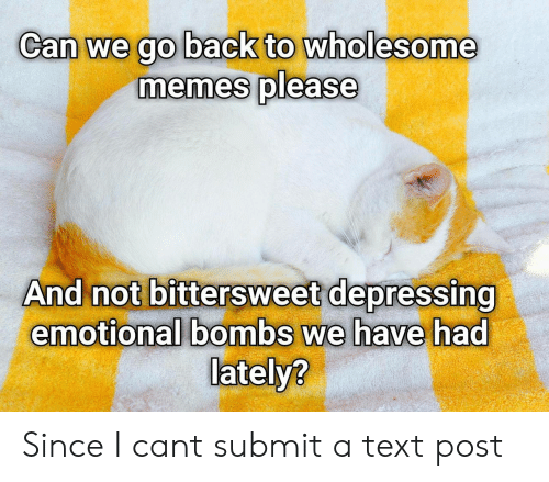 bombs: Can we go back to wholesome  memes please  And not bittersweet depressing  emotional bombs we have had  lately? Since I cant submit a text post