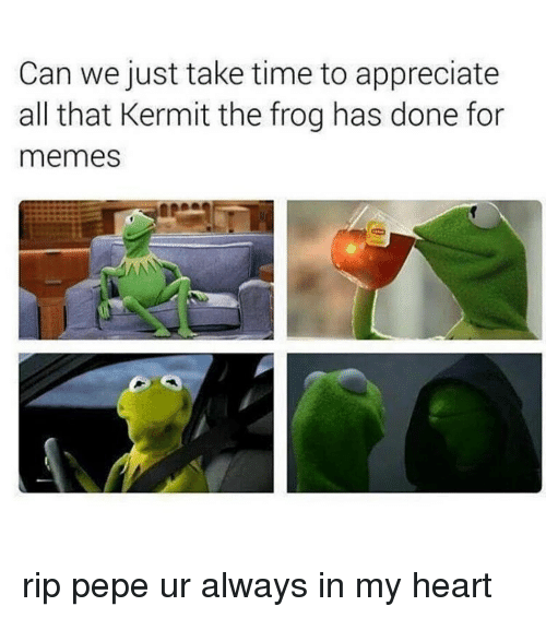 Kermit the Frog, All That, and Can: Can we just take time to appreciate  all that Kermit the frog has done for  memes rip pepe ur always in my heart