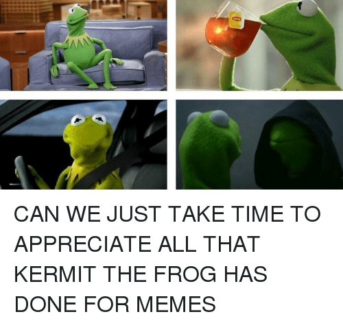 Kermit the Frog, Memes, and Appreciate: CAN WE JUST TAKE TIME TO APPRECIATE ALL THAT KERMIT THE FROG HAS DONE FOR MEMES