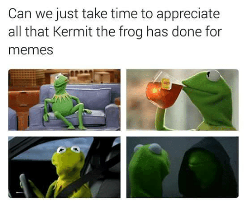 Funny, Kermit the Frog, and Appreciate: Can we just take time to appreciate  all that Kermit the frog has done for  memes