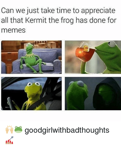 Kermit the Frog, Memes, and Appreciate: Can we just take time to appreciate  all that Kermit the frog has done for  memes  ANN 🙌🏼🐸 goodgirlwithbadthoughts 💅🏽