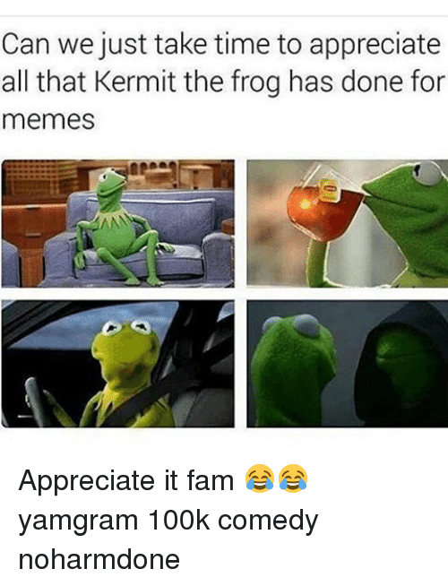 Fam, Kermit the Frog, and Memes: Can we just take time to appreciate  all that Kermit the frog has done for  memes Appreciate it fam 😂😂 yamgram 100k comedy noharmdone