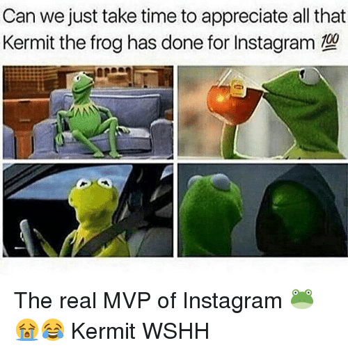 Kermit the Frog, Memes, and Wshh: Can we just take time to appreciate all that  Kermit the frog has done for Instagram The real MVP of Instagram 🐸😭😂 Kermit WSHH