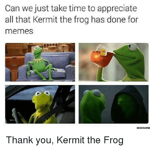 Kermit the Frog, Memes, and Appreciate: Can we just take time to appreciate  all that Kermit the frog has done for  memes  AN  memessdcom Thank you, Kermit the Frog