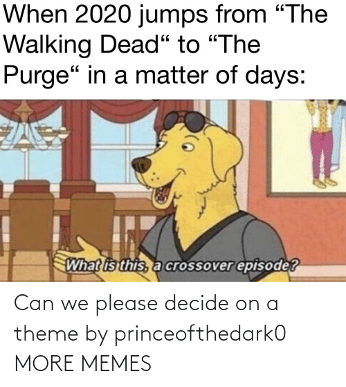 Decide: Can we please decide on a theme by princeofthedark0 MORE MEMES