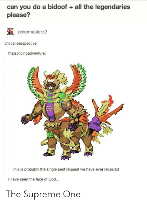 bidoof: can you do a bidoof all the legendaries  please?  pokemasterz2  critical-perspective:  thatsplicingadventure:  This is probably the single best request we have ever received  I have seen the face of God. The Supreme One