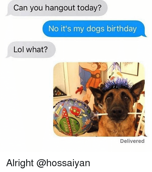 Birthday, Dogs, and Lol: Can you hangout today?  No it's my dogs birthday  Lol what?  Delivered Alright @hossaiyan