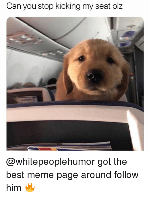 Meme, Memes, and Best: Can you stop kicking my seat plz @whitepeoplehumor got the best meme page around follow him 🔥