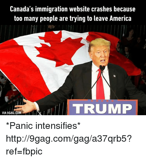 Canada Immigration: Canada's immigration website crashes because  too many people are trying to leave America  TRUMP  VIA GAG.COM *Panic intensifies* http://9gag.com/gag/a37qrb5?ref=fbpic