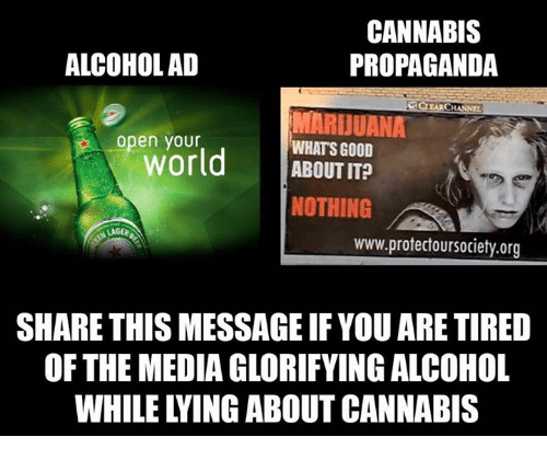 Cannabis: CANNABIS  ALCOHOL AD  PROPAGANDA  CHANN  MARIJUANA  open World  WHATS GOOD  ABOUT IT?  NOTHING  LAGER  www.protectoursociety.org  SHARE THIS MESSAGEIF YOU ARE TIRED  OF THE MEDIA GLORIFYING ALCOHOL