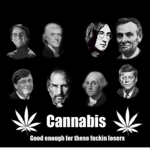 Cannabis: cannabis  Good enough for these fuckinlosers