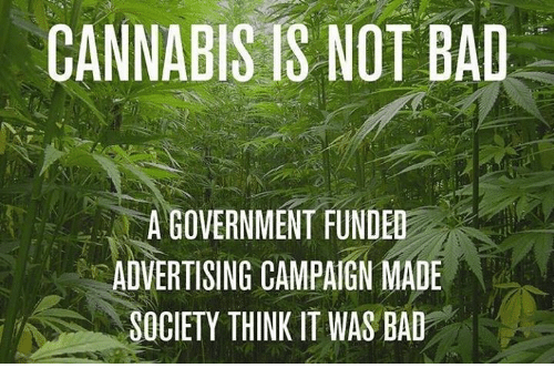Cannabis: CANNABIS IS NOT BAD  A GOVERNMENT FUNDED  ADVERTISING CAMPAIGN MADE  SOCIETY THINK IT WAS BAD
