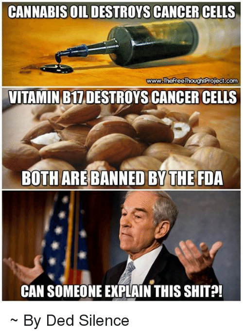 Cannabis: CANNABIS OIL DESTROYS CANCER CELLS  www.TheFreeThoughtProject.com  VITAMIN B17DESTROYSCANCER CELLS  BOTH ARE BANNED BY THE FDA  CAN SOMEONE EXPLAIN THIS SHIT ~ By Ded Silence