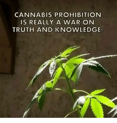 Cannabis: CANNABIS PROHIBITION  IS REALLY A WAR ON  TRUTH AND KNOWLEDGE!