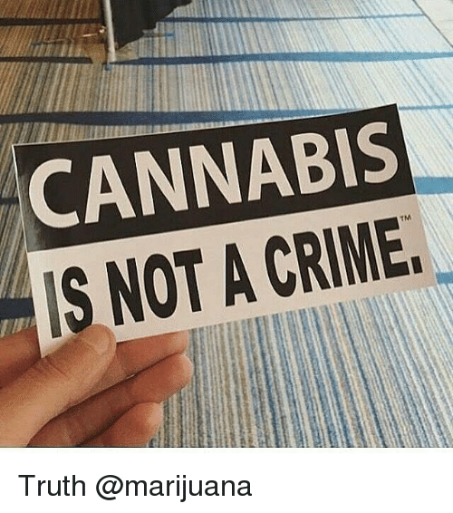 Weed, Marijuana, and Cannabis: CANNABIS  TM Truth @marijuana