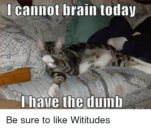 I Have The Dumb: cannot brain today  I have the dumb Be sure to like Wititudes