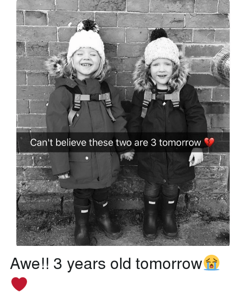 Memes, 🤖, and Aweful: Can't believe these two are 3 tomorrow Awe!! 3 years old tomorrow😭❤