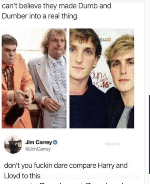 Cant Believe: can't believe they made Dumb and  Dumber into a real thing  ESS  Jim CarreyO  @JimCarrey  drgraytang  don't you fuckin dare compare Harry and  Lloyd to this