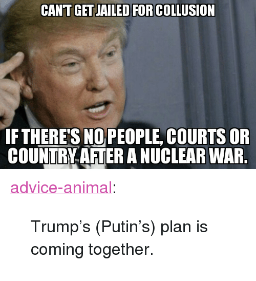 """nuclear war: CANT GET JAILED FOR COLLUSION  FTHERE'S NOPEOPLE, COURTS OR  COUNTRY AFTER A NUCLEAR WAR <p><a href=""""http://advice-animal.tumblr.com/post/169280716843/trumps-putins-plan-is-coming-together"""" class=""""tumblr_blog"""">advice-animal</a>:</p>  <blockquote><p>Trump's (Putin's) plan is coming together.</p></blockquote>"""