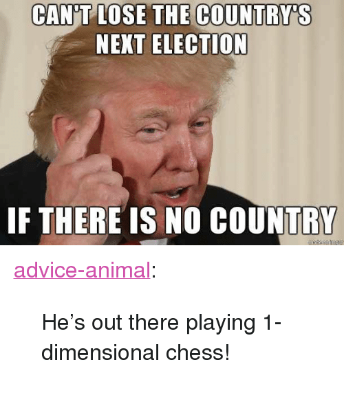 """Advice, Tumblr, and Animal: CAN'T LOSE THE COUNTRY'S  NEXT ELECTION  IF THERE IS NO COUNTRY <p><a href=""""http://advice-animal.tumblr.com/post/169277548260/hes-out-there-playing-1-dimensional-chess"""" class=""""tumblr_blog"""">advice-animal</a>:</p>  <blockquote><p>He's out there playing 1-dimensional chess!</p></blockquote>"""