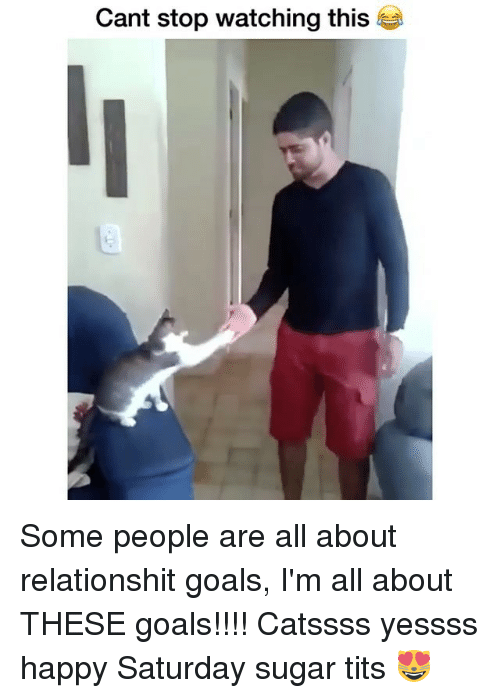 Titsed: Cant stop watching this Some people are all about relationshit goals, I'm all about THESE goals!!!! Catssss yessss happy Saturday sugar tits 😻