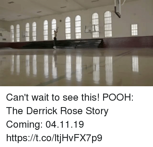 Derrick Rose: Can't wait to see this!  POOH: The Derrick Rose Story Coming: 04.11.19  https://t.co/ltjHvFX7p9