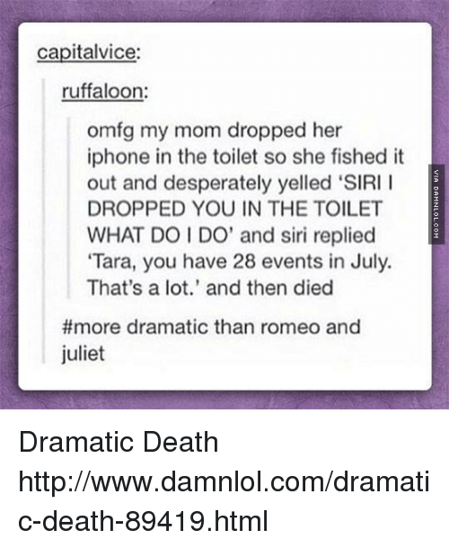 "Memes, Siri, and Romeo and Juliet: capitalvice:  ruffaloon:  omfg my mom dropped her  iphone in the toilet so she fished it  out and desperately yelled ""SIRI I  DROPPED YOU IN THE TOILET  WHAT DO I DO' and siri replied  ""Tara, you have 28 events in July.  That's a lot.' and then died  more dramatic than romeo and  juliet Dramatic Death http://www.damnlol.com/dramatic-death-89419.html"